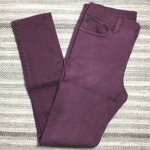 Express pant in Purple